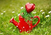 Decorative Heart — Foto de Stock