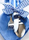 Blue Cutlery Set — Stock Photo