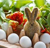 Easter Bunny in Egg Box — Stock Photo
