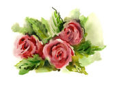 Watercolor -Roses- — Stock Photo