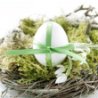 Easter egg in the nest — Stock Photo