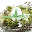 Stock Photo: Easter egg in the nest