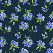 Forget-me-not Flowers Pattern — Stock Photo