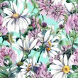 Summer Flowers Seamless Pattern — Stock Photo #48091933
