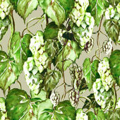 Hops Seamless Pattern — Stock fotografie