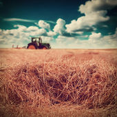 Haying - — Stock Photo