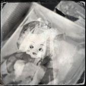 Horror Dolly Retro Photo — Stock Photo