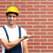Presenting young worker in front of a brick wall — Stock Photo #35582683