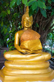 Gold buddha meditation statue — Stock Photo