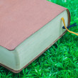 Old book on the grass — Stock Photo