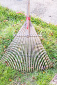 Cleaning dried grass and leaf in the garden by rake (harrow) — Foto Stock