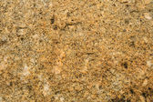 Stone texture for background — Stock Photo