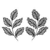 Decorative Leaf with Ornament — Vector de stock