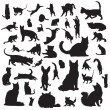 Cat silhouettes — Stock Vector
