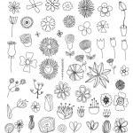 Set of flower doodles — Stock Vector
