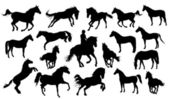 Set of vector horses silhouettes — Stock Vector