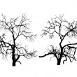 Two dead trees without leaves — Stock Vector