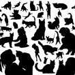 Stock Vector: Cats silhouettes
