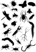 Set of insect silhouettes — Stock Vector
