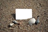 Blank namecard with various shells on sand — Stockfoto