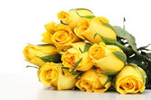 Yellow roses isolated — Stock Photo