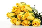 žluté růže, samostatný — Stock fotografie
