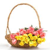 Beautiful rose in wooden basket — Stock Photo