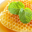 Close up sweet honeycombs with mint leaf — Stok Fotoğraf #41171087
