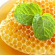 Stock Photo: Close up sweet honeycombs with mint leaf