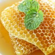 Foto Stock:  sweet honeycombs with mint leaf