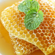 Stock Photo:  sweet honeycombs with mint leaf