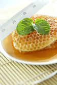 Sweet honeycombs with mint leaf — Stock Photo