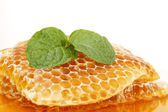 Sweet honeycombs with mint leaf — Zdjęcie stockowe