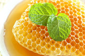 Close up sweet honeycombs with mint leaf — Stok fotoğraf