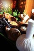 The Herbal compress ball for spa treatment — Stock Photo
