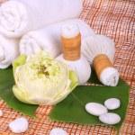 Спа-массаж с полотенцем, тайский травяной сжимать марок и — Стоковое фото #41997731