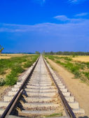 Rail tracks disappearing in the distance — Stock Photo
