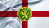 The flag of Alderney — Stock Photo