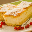 Home made Cheese cake — Foto de Stock