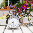 Old alarm clock in summer garden — Foto de Stock