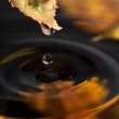 Autumn leaf with a drop over water — Stock Photo