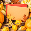 Autumn frame around greeting cards, text space — Stock Photo