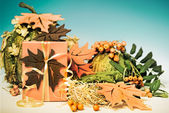 Autumn arrangement with gift box — Stock Photo