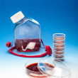 Stock Photo: Cell culture or bacterial experiment
