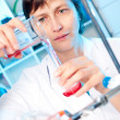 Scientist works in a chemical lab — Stock Photo