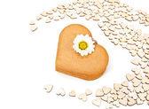 在白色背景上的姜饼心 — 图库照片