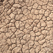 Dry earth — Foto Stock