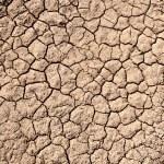terra secca — Foto Stock