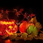 Halloween pumpkin on black background — Stock Photo #33376813