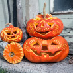Carved Halloween pumpkins — Stock Photo #33378143